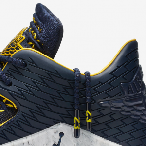 Air Jordan 32 Low Michigan